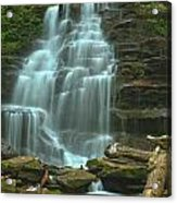 Ricketts Glen Cascading Falls Acrylic Print