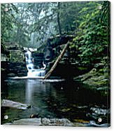 Ricketts Glen Falls 016 Acrylic Print