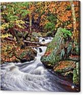 Ricketts Glen Falls Acrylic Print