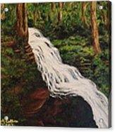 Ricketts Glen Waterfall Acrylic Print