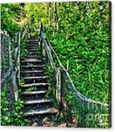 Rickety Stairs Acrylic Print