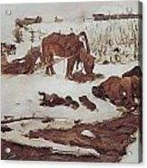 Rinsing Linen On The River 1901 Acrylic Print