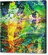 Ripened Vines Acrylic Print