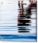 Rippled Reflection Acrylic Print