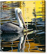 Ripples And Reflections 2 Acrylic Print