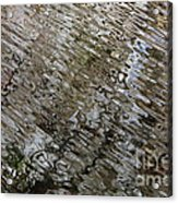 Ripples In The Swamp Acrylic Print