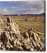 Rise Of Gneis Rock Formations Acrylic Print