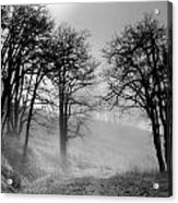 Rising Mists In The Bald Hills Acrylic Print