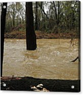 Rising Waters With Timber Acrylic Print