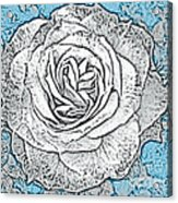 Ritzy Rose With Ink And Blue Background Acrylic Print