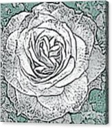 Ritzy Rose With Ink And Green Background Acrylic Print
