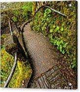 Exploring Columbia River Gorge - Highway 30 Acrylic Print