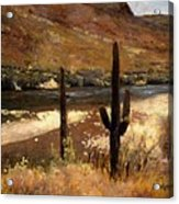 River And Cactus Acrylic Print