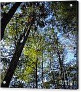 River Bend Park 3 Acrylic Print