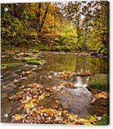 River Blyth In Autumn Vertical Acrylic Print