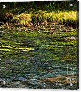 River Colors Acrylic Print