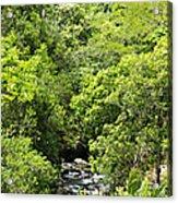 River Glimpses Acrylic Print