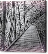 River Of Dreams Acrylic Print