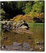 River Of Love  Acrylic Print by Tim Rice