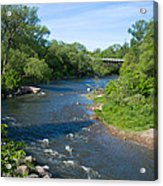 River Passing Through A Forest, Beaver Acrylic Print