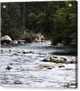 River Runs Through It Acrylic Print