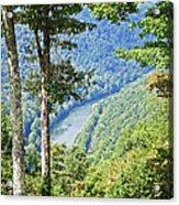 River Thru The Trees Acrylic Print