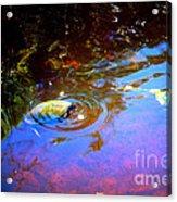 River Turtle Acrylic Print