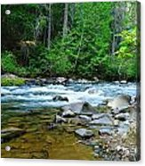 River View Acrylic Print