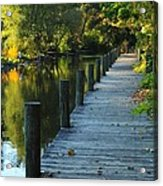 River Walk In Traverse City Michigan Acrylic Print by Terri Gostola