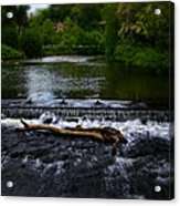River Wye - In Peak District - England Acrylic Print