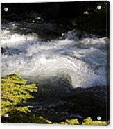 River's Ebb Acrylic Print