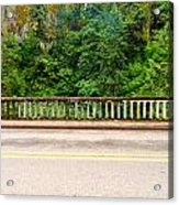 Road And Lush Green Forest Acrylic Print
