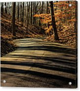 Road Into The Woods Acrylic Print