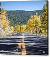 Road Of Color Acrylic Print