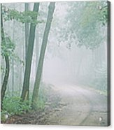 Road Passing Through A Forest, Skyline Acrylic Print