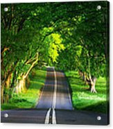 Road Pictures Acrylic Print