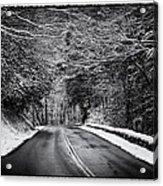 Road Through Dark Snowy Forest E93 Acrylic Print