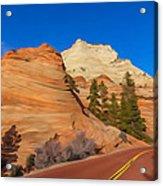Road Through Zion Np Acrylic Print