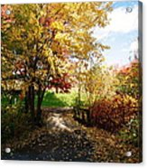 Road To Happyness Acrylic Print by Jocelyne Choquette