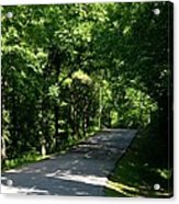 Road To Nature Acrylic Print
