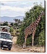 Roadside Attraction Acrylic Print