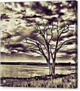 Roadside Scenery Acrylic Print