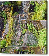 Roadside Waterfall. Mount Rainier National Park Acrylic Print