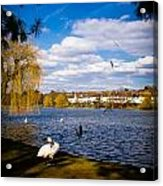 Roath Park Lake Acrylic Print
