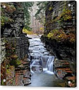 Robert Treman State Park Acrylic Print by Frozen in Time Fine Art Photography