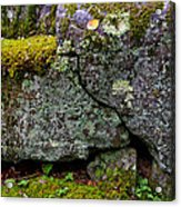 Rock Face With Moss Acrylic Print