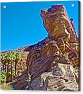 Rock Formation Higher Than Fan Palms Along Lower Palm Canyon Trail In Indian Canyons Near Palm Sprin Acrylic Print