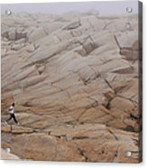 Rock Jogger At Peggy's Cove Acrylic Print