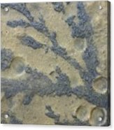 Rock Patterns On Mars Acrylic Print