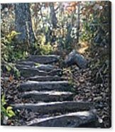 Rock Stairs Acrylic Print